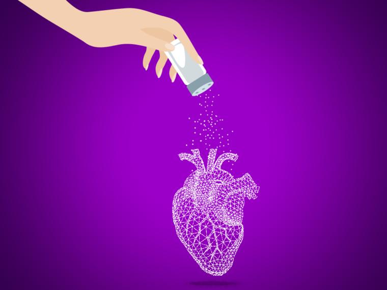 Risques Cardio-Vasculaire Consommation Sel Santé