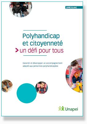 LivreBlanc-polyhandicap.png